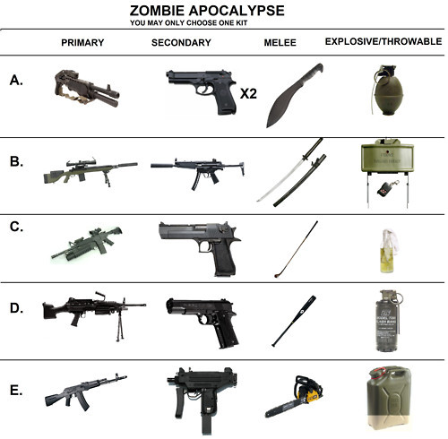 anglophilium:  zombify:  Choose your kit ?  B  Definately B
