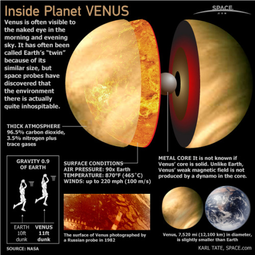 ikenbot:  Earth's Siblings: Inside The Planets Click each for a neat and informative view of the neighboring planets in our Solar System. via SPACE