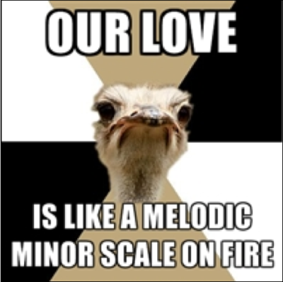 "fyeahmusicmajorostrich:  [Picture: Background: six-piece pie style, alternating white, tan, and black. Foreground, in middle: grimacing ostrich head. Top text: ""OUR LOVE"" Bottom text: ""IS LIKE A MELODIC MINOR SCALE ON FIRE""]"