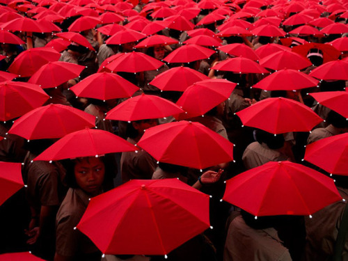 Schoolchildren With Umbrellas. Photograph by Jodi Cobb.