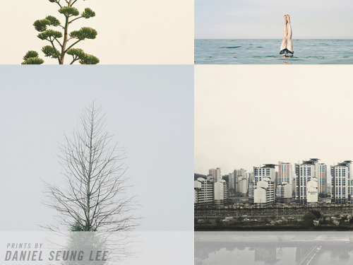 michellealexisnewman:  Daniel Seung Lee is a talented photographer and fellow Phoot Camper, AND now his work is available for purchase!!! danielseunglee:  Finally put my print store up on my website! You can check it out here: www.danielseunglee.com/shop
