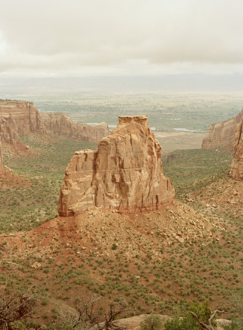 danielseunglee:  Colorado National Monument, Colorado