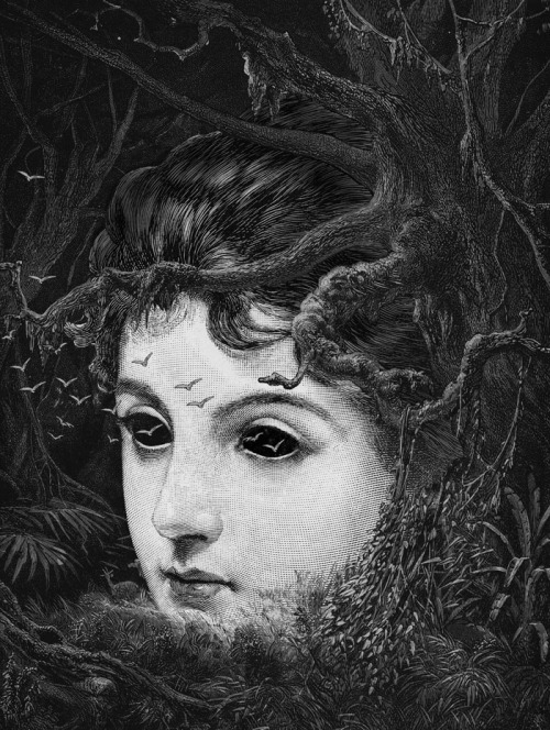 "iamharm:  ""Forest"" by Dan Hillier."