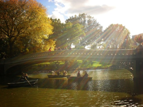 "Sun rays pouring over Bow Bridge in autumn. Central Park, New York City  I was stuck without a working internet connection at home since early Monday. Thankfully, it just got fixed a few hours ago which means I am now catching up with the past week and my overflowing inbox.  This past weekend I went to the 2nd Google Plus NYC walk, the Maker Faire and was also fortunate enough to visit the new 9/11 memorial. I will be posting photos from all of these events/places in the coming week.   If you are curious to catch a preview glimpse of some of the photos (which I am in) taken by some other brilliant photographers from the Google Plus Photowalk, feel free to view my profile photos on Google Plus where I have uploaded them with info about the photographers in the captions/comments:  Profile photos from the 2nd Google Plus NYC Photowalk   I also just found out that I am one of the featured artists on the newly launched site Sociolog+ which you can view here: Vivienne Gucwa's Photography on Sociolog+. Exciting!  Due to my feature on Sociolog+, I have had quite a few requests about one particular photo in my portfolio there so I am going to re-post a post from a few months ago with the photo and the writing that accompanied it for the benefit of newer people. Enjoy!  —-  It was one of those days where there was just a bit of briskness in the air accompanied by the last pangs of summer heat. I didn't go to the park to take photos (even though I had my camera). I told myself I was there primarily to walk around and enjoy the last remnants of warm weather. I took a moment to rest on the grass. As I looked to my right, the most magnificent rays of sunlight started streaming over Bow Bridge illuminating the people in the row boats and the water on the lake.   The ability to capture these uniquely experienced moments is at the core of photography. Cameras become jars with which to capture moments that flicker like fireflies. In this way, photographers are moment collectors and dream catchers. Every collected moment and every captured dreamscape is the result of the tiny flicker that catches the photographer's eye in such a profound way that it becomes an impossible feat to deny the urge to embrace the moment by capturing it in a photo.    —-    —-  Buy ""Sunlight and Boats - Bow Bridge Central Park"" Prints and Posters here, View my store, email me, or ask for help."