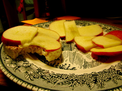 study break! rice cake with 1/2 T almond butter and sliced apples