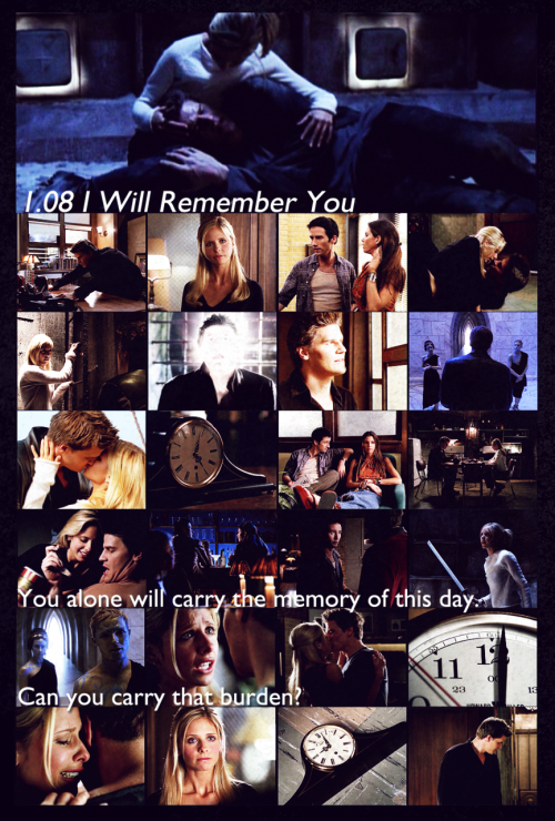 "bluefootedbooby:  Day 06. Favorite episode of Angel Season One: ""I Will Remember You"" I knew I'd get stuck here. I had lots of life-stuff to do the past few days and Angel is my least favorite of Joss's shows. For any who know me (and how hardcore I ship Buffy and Spike) this is going to seem like a really weird choice for favorite episode from Season One. So I'll straighten this out: Buffy and Angel tear me to shreds. And I like being torn to shreds. But it gets old. The characters change. They stop tearing me up. Now, why do I love this episode so much? Well. I just said, yeah? I seem to have this thing for episodes that are alternate takes, alternate universes, and alternate points of view. The backstory episodes, or the strange magical episodes where the whole world gets altered, or things that fundamentally change the story just for a moment—those are my favorite things. This episode is a Ship-Tease. And I just love it. It hurts in all the wrong places. Plus it has Doyle. And Buffy. It's that point where we see we need to put the past behind us and move on. Episodes titled with song titles are never done so lightly. So I leave you with this:  I will remember you.Will you remember me?Don't let your life pass you by.Weep not for the memory.   Of course Spike is one of the best charachters ever, but this episode will always tear my heart apart"