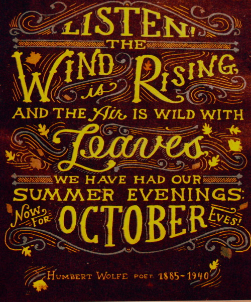 tatteredcover:Listen! The wind is rising and the air is wild with Leaves