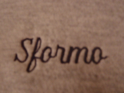 "The ""Sperma"" sweatshirt. Please read the Italy: Home of the ""Sf"" Blog for an explanation."