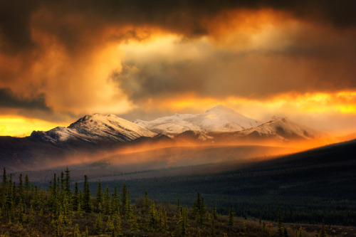 llbwwb:  Golden Clouds  (via Dan Ransom | Smashing Picture)