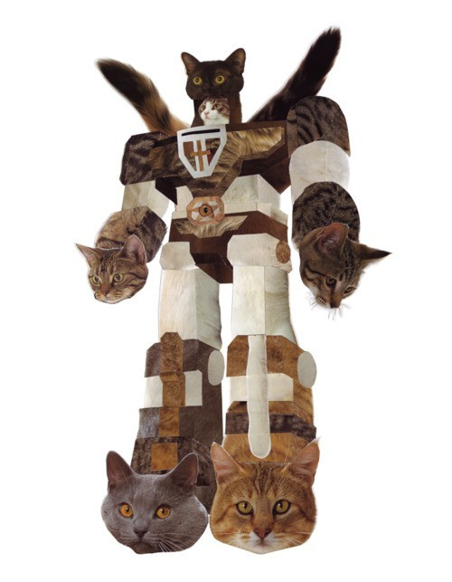 getoutoftherecat:  stop that cats. you are not a giant robot. you are made with nuts and bolts you are cats.