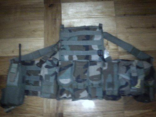 Photos of my vest that I use in airsoft. It's a Ranger Assault Carry Kit from Specialty Defense Systems. I picked it up from a gear collector and spent the past 3 months adding patches as I could afford them. It carries 2 Life Gear glowsticks, some combos, a full medkit, 7 M4 Magazines, and the team radio. The entire vest fully loaded weighs close to 10 lbs.