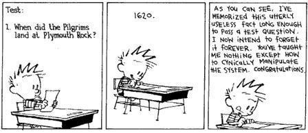 Calvin, on standardized testing.
