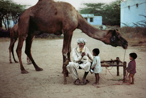 schisms:  Rajasthan, India by Steve McCurry