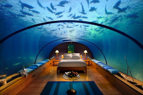 a bed fit for a mermaid, like me .  .  .