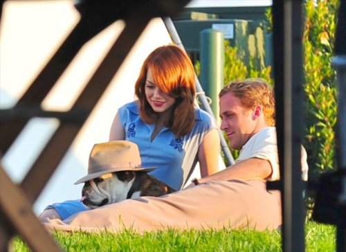 eladam:  It's a bulldog, wearing a hat, hanging out with Emma Stone and Ryan Gosling.