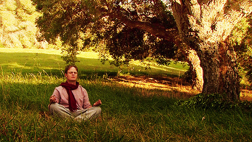 """An hour of meditation every morning at sunrise, and again at sunset."""