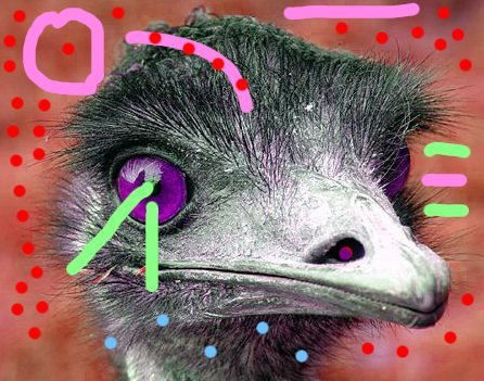 F0cK ROBOT emu, likes to have sex with you if you are OK with it.