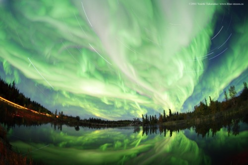 September's Aurora  Image Credit & Copyright:  Yuichi Takasaka / TWAN / www.blue-moon.ca  Explanation:  September's equinox arrives today at 0905 UT.  As the Sun crosses the celestial equator heading south, spring begins in the southern hemisphere and autumn in the north.  And though the seasonal connection is still puzzling, both spring and autumn bring an increase in geomagnetic storms.  So as northern nights grow longer, the equinox also heralds the arrival of a good season for viewing aurora.  Recorded earlier this month, these curtains of September's shimmering green light sprawl across a gorgeous night skyscape.  In the foreground lies Hidden Lake Territorial Park near Yellowknife, Northwest Territories, Canada.  Calm water reflects the aurora, with bright star trails peering through the mesmerizing sky glow.  Of course, shining at altitudes of 100 kilometers or so, planet Earth's auroras are visible from space.
