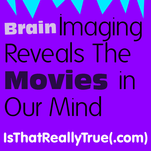 Medical Express: Brain Imaging Reveals the Movies in Our Mind Discovery News: Now Showing: Movie Clips From Your Mind