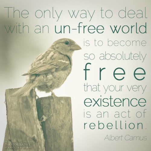 The  only way to deal with an un-free world is to become so absolutely free  that your very existence is an act of rebellion. - Albert Camus