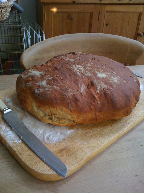 My first ever homemade bread!  'Gennaro's bread'. Taleggio, parmesan, gorgonzola, prosciutto and basil. Delicious.