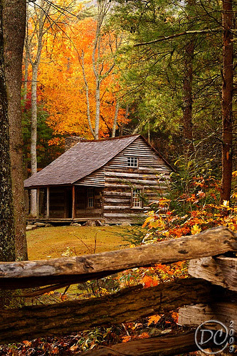 Carter Shields Cabin in Autumn, Cades Cove, Great Smoky Mountains (by Deb Campbell)