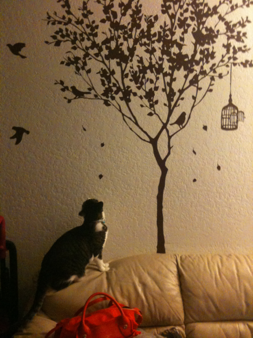 This wall decal is very misleading for my poor little Eva. At least she can practice her hunting skills.
