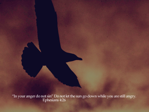 """""In your anger do not sin"" Do not let the sun go down while you are still angry."""