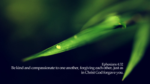 """Be kind and compassionate to one another, forgiving each other, just as in Christ God forgave you."""