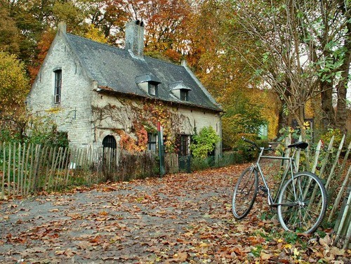 dyingofcute:  and autumn cottage!