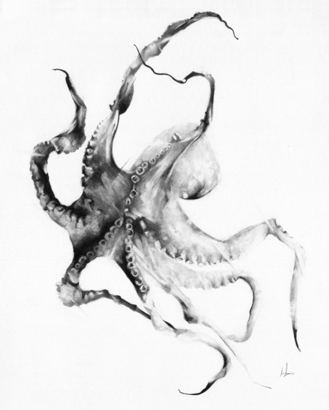 inkwings:  Octopus by Alexis Marcou