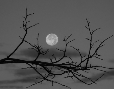 Harvest Moon by ViewsOfIreland.com [busy busy] on Flickr.
