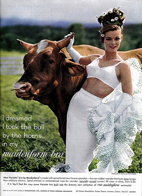 I Dreamed I Took The Bull By The Horns In My Maidenform Bra by clotho98 on Flickr.