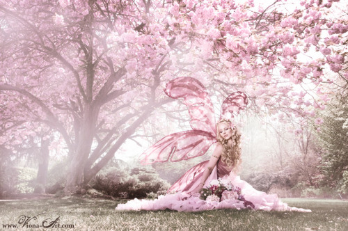 ramblings-of-a-mad-woman:  Cherry Blossom Fairy - Viona Art