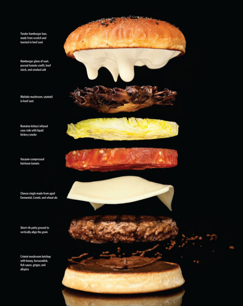 good:  What a gorgeous sandwich… er, does a burger count? #SandwichWeek Join the discussion on GOOD→ scottlyle:  (via Modernist Cuisine: The Art and Science of Cooking » Design You Trust – Design and Beyond!)