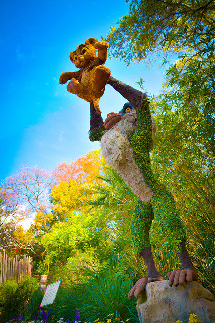 callmeprincecharming:  Epcot - Circle of Life by SpreadTheMagic on Flickr.