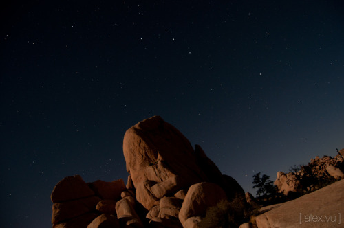 Joshua Tree and the Big Dipper