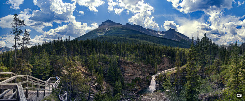 hiking near waterton, alberta.