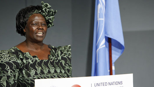 mothernaturenetwork:  Wangari Maathai, savior of trees, diesMaathai, the first African woman to win the Nobel Peace Prize, died Sunday after a long struggle with ovarian cancer.  rest in peace ♥