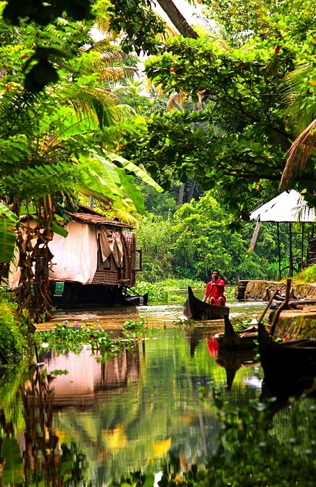desert-dreamer:  kerala backwaters, india