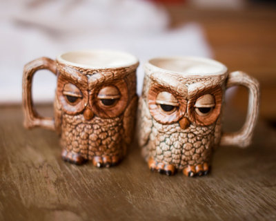 Can't believe I missed the boat on these surly-looking owl mugs :( EDIT: DON'T WORRY GUYS, I GOT ONE!!!! WOO!