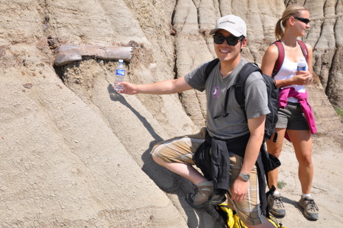 Engineer for scale. Belly River Formation, Dinosaur Provincial Park