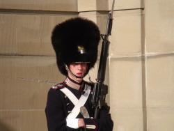 A royal guard at Amalienborg Palace, Copenhagen.