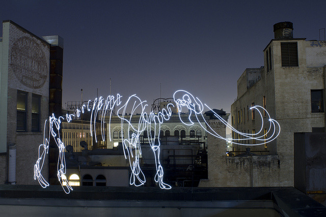 Illustration via Light paintings in photography. Absolutely beautiful. justforstupidpeople:  Light Fossils by Darren Pearson, is a beautiful series of Light Paintings of dinosaurs, some of which are available as prints.