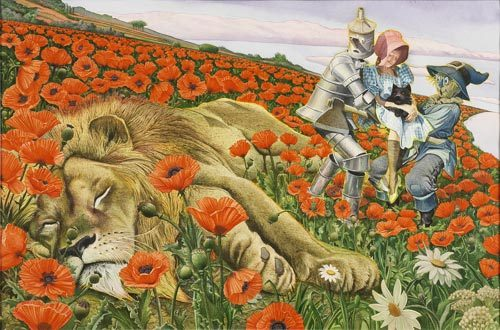"fairytalemood:  ""Poppy Field"" by Charles Santore"