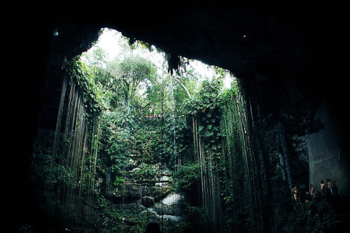 bonjour-sailor:  Cenote Ik Kil, Underground by Fraser C on Flickr.