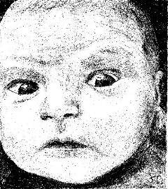 This is a pencil drawing of a baby that I did using a magazine photograph.