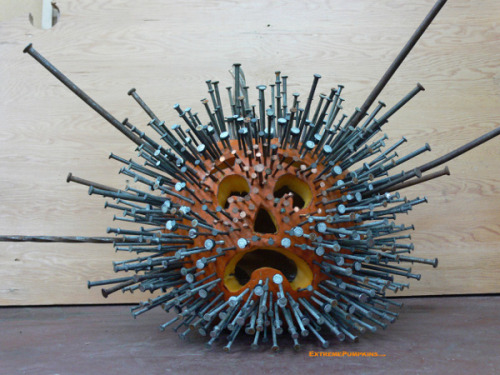 DIY Pumpkin with Lots of Nails. Winner of extreme pumpkin award in 2008 at Extreme Pumkins here. Not much to explain - pound in lots and lots of nails into a carved pumpkin. Great pumpkin site.