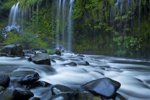 Mossbrae Falls, At the River's Bend