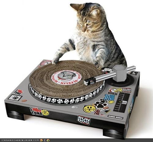 @Djroxanne little needs this
